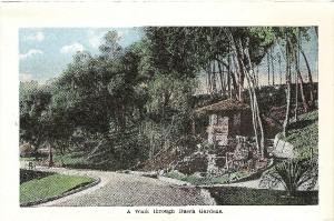 CaLP_LosAngles_Busch_Gardens