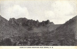 Scene in Florida Mountains Near Deming, N.M.