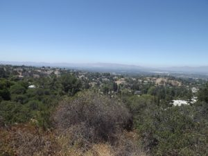 view from Mulholland Dr