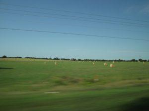 farm land with hay rolls