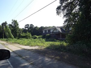 The house taken over by kudzu